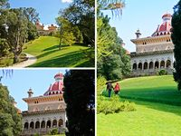 Monserrate Palace - Gardens / Monserrate Palace Wedding Venue has amazing gardens that can be used for the ceremony, cocktail, photos. Enchanted gardens and secret places are amazing spots for magical photos. #monserratepalace #monserratepalacewedding #monserratepalaceweddings #destinationwedding #weddingvenuesportugal #portugalweddings #weddingvenues #weddingsinportugal If you'd like to visit  Monserrate Palace Wedding Venue to book your wedding contact us today. Our website http://www.weddingvenuesportugal.com