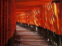 Kyoto and superb views. / 京都、日本の美しい風景。