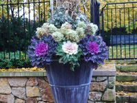 Fall Containers