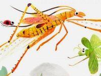 Beautiful Bugs