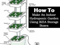 17 Best Images About Hydroponic Garden Ideas On Pinterest