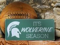 LET'S GO SPARTANS!!!! Michigan State Spartans Football!!! http://www.bigtenfootballschedule.com