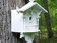Birdhouses,