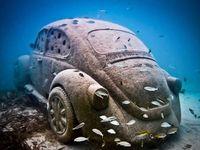 Mergulho / Diving