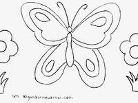 Gambar Kupu Kupu Hitam Putih Untuk Diwarnai Mawar Ku