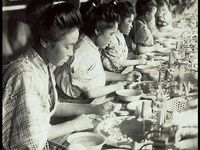 Workers/ Factory Workers