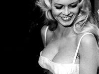 Brigitte bardot  Board