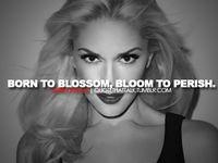 12 best Gwen Stefani's... Gwen Stefani