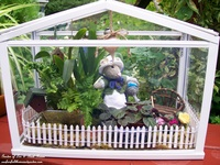 Magical garden ideas for the child in all of us! Visit my website/blog at http://ourfairfieldhomeandgarden.com