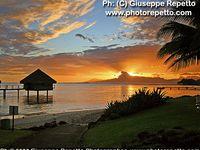 las vegas hotels tahiti village resort