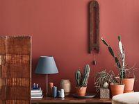 Osez la couleur ! / Inspiration couleur en décoration d'intérieur