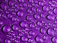 The color purple is often associated with royalty, nobility, luxury, power, and ambition. Purple also represents meanings of wealth, extravagance, creativity, wisdom, dignity, grandeur, devotion, peace, pride, mystery, independence, and magic.
