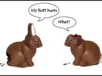 Which came first: The Bunny or the Egg?