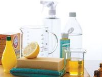 DIY CLEANING PRODUCTS, INSECTICIDES, POTPOURRI