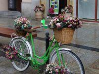 Muzycznie I Patriotycznie Flowers Basket Bike