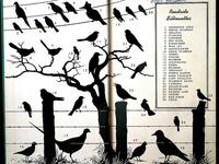 Bird on a Love Wire