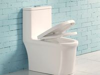 Thena Dual Flush Elongated One Piece Toilet Seat Included En 2020