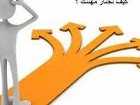 بوابه التوطين إدارة الارشاد المهني خدمات الخليج Fur Slides