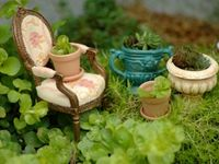 The most delightful collection of miniature Fairy Gardens... Fairy Gardens in containers, Fairy Gardens in trees, Kid-friendly Fairy Gardens. For more Fairy Garden inspiration, please visit The Magic Onions : http://www.themagiconions.com/fairy-gardens