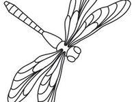 needlework 2