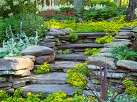 For the Home - Lawn & Garden