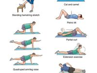 57 best images about exercises for lower back spasm pain