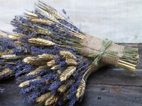 Some of the beautiful things you can make or do with lavender!