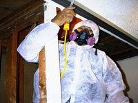 Black Mold Test Anaheim / If you have a black mold problem in your home, Mold Fighter Company provide total mold free environmental solutions with Black Mold Test in Anaheim, Costa Mesa, Fullerton and Huntington Beach.