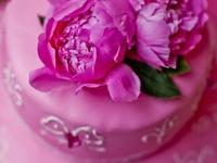 Wedding - Fuchsia