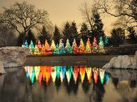I ♥ Christmas Trees!