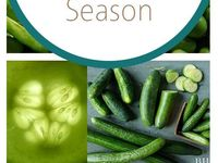 Growing veg from veg