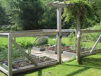 Vegetable garden fencing and raised beds