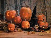 Holidays - Autumn