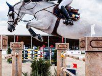equitación y polo  Board