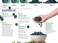 Health Nutrition & diet