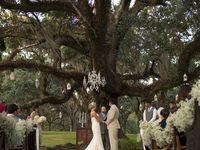 Jadens wedding