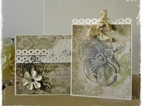 Assorted Folds for Cards