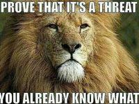 I'm a leo ♡