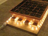 DIY- Gardening