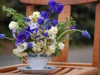 August Flowers / seasonal flowers in the Adelaide Hills