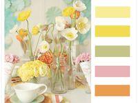 palettes/color themes