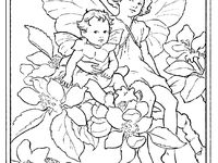 1000 Images About Coloring Pages On Pinterest Dovers