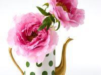 Flowers & Decor