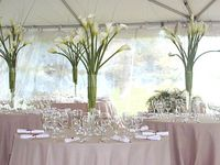 www.brandonmichaellee.com Award Winning Event Design & Decor #decorations #wedding #centerpiece #flowers