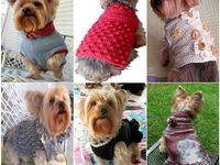 Crochet Dog Items