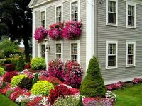 Gardens,Landscapes, and Porches