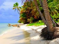 Beach vacations?