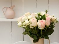 Beautifull Roses / Same Day Flowers Delivery UK - UK Flowers Delivery send beautiful flowers UK for customers, offering a Cheap Flowers Delivery today from purely flowers in UK. Buy flowers online and Get fresh and beautiful flowers from purely flowers.