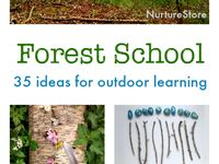 forest schools & outdoor learning