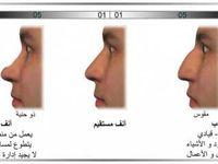 فرانك لويد رايت Frank Lloyd Wright الفراسة قراءة الوجه احمد رياض Body Language Face Language